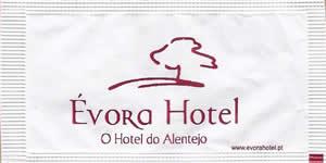 Évora Hotel  (verso - símbolo Delta à  direita)